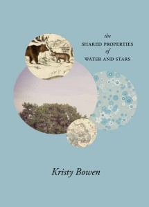Kristy Bowen - Book Cover 2