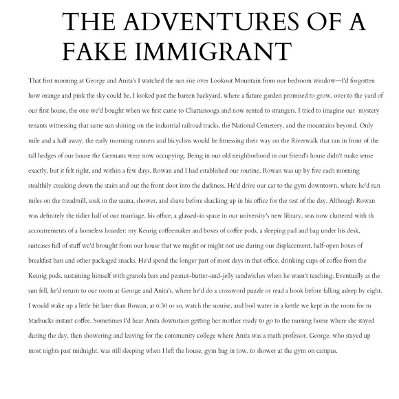 the wardrobe s best dressed ldquo immigration essays rdquo by sybil baker this selection comes from the essay collection immigration essays available from c r press order your copy here