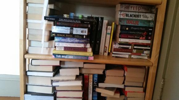 Tierney Bailey Bookshelf 3